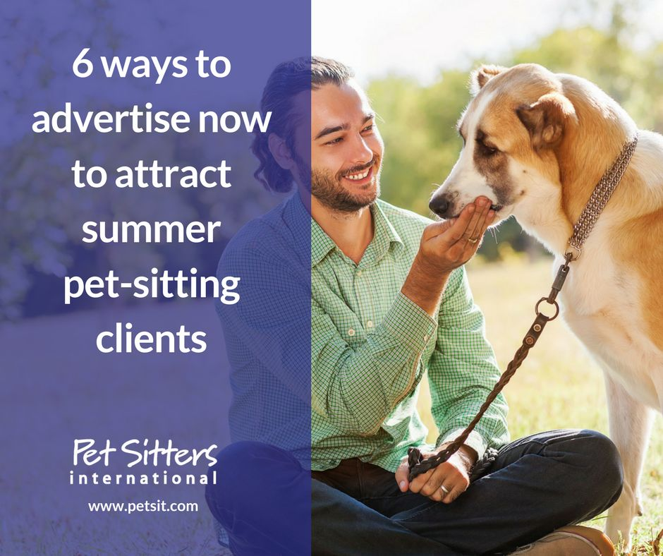 advertise summer pet sitting