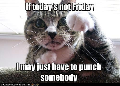 FRIDAY punch TGIF funny