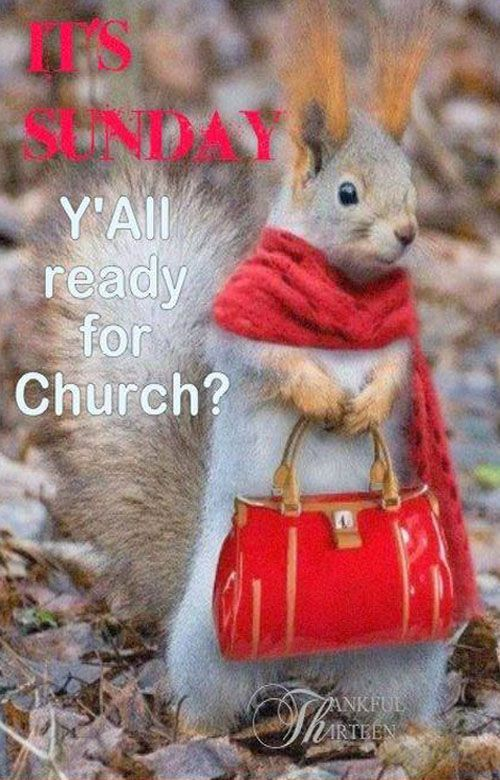 Love going to Church Sunday morning & evening & Wed too