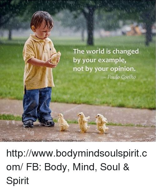 Bo s Memes and Http The world is changed by your example not
