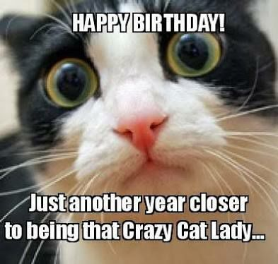 Grab Hold Of the Unbelievable Funny Birthday Cat Pictures for Women