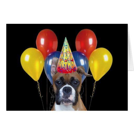 Dog Birthday Meme Happy Birthday Boxer Dog Memes 3 Maggie S