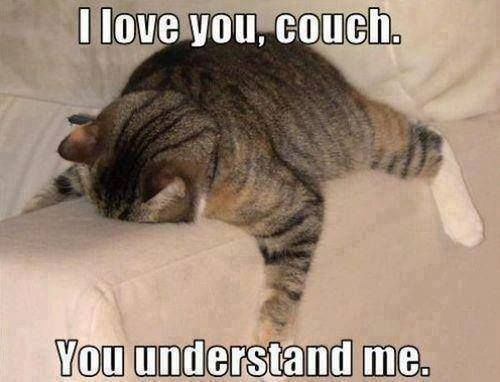 i love you couch Check out this super funny