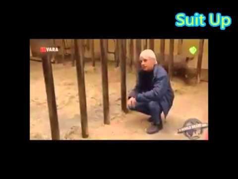 OMG baby rhino Funny man Jurassic world in 6 seconds