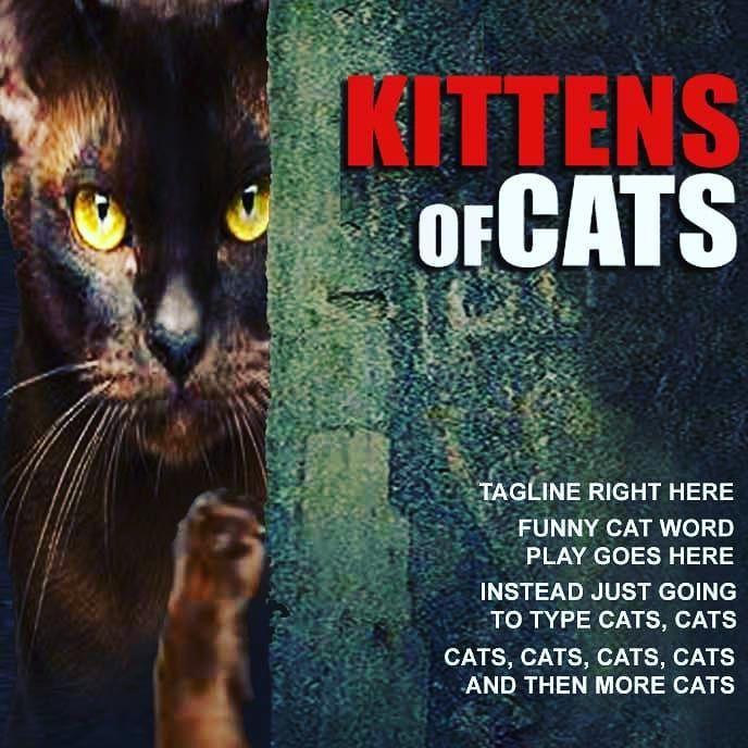 t random movie coi kittens
