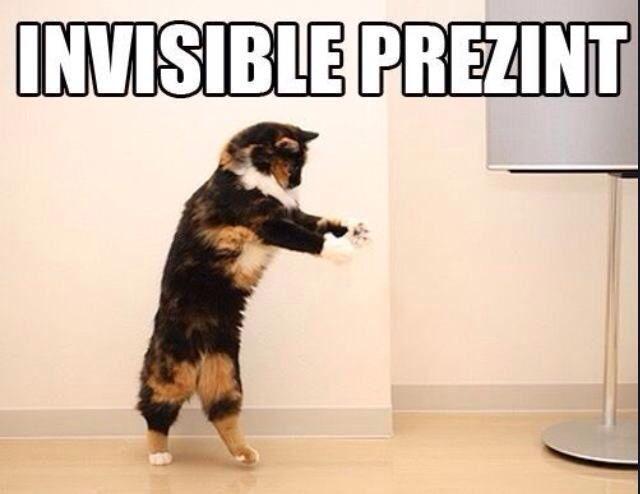 Prezint Funny Animal Funny Animal Memes Funny Cats Funny Animals Animal