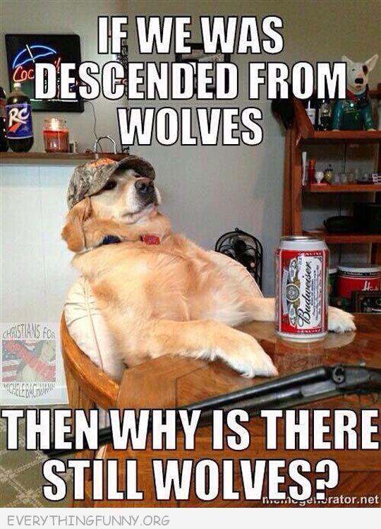 Image result for dog calling 911 meme