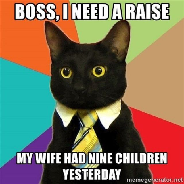 Black cat wearing collar and neck tie asking for a raise