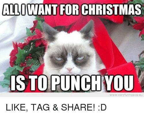 Grumpy Cat Pcs and Punch ALLOWANT FOR CHRISTMAS IS TO PUNCH YOU