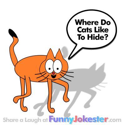 Funny Cat Joke for Kids