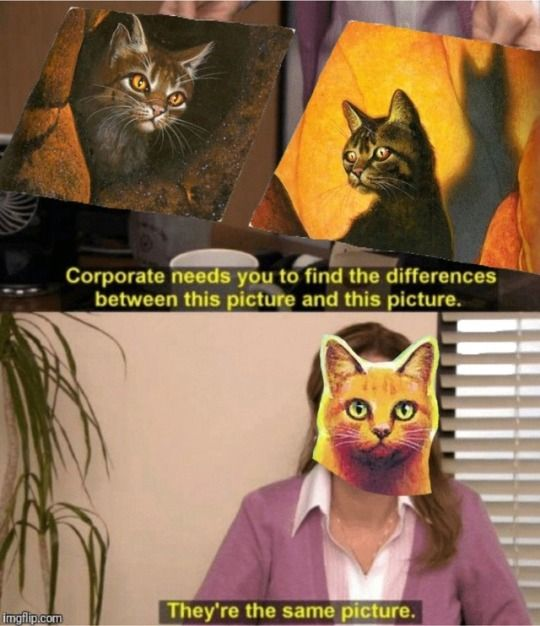 warrior cats warrior cats memes firestar tigerstar bramblestar the office memes