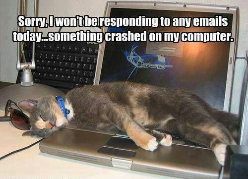 Sorry I won t be responding to any emails today mething crashed on my puter