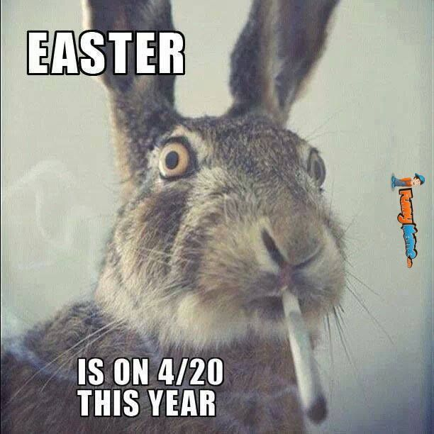 Animal memes Easter is on 4 20 this year