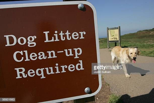 A dog walks by a sign about litter cleanup at Ft Funston February 24 2006 in