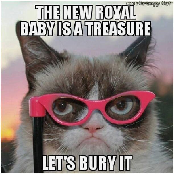 Grumpy Cat Jokes Twinkle for kids Grumpy Cat Jokes Twinkle Top 30 Funny animal memes