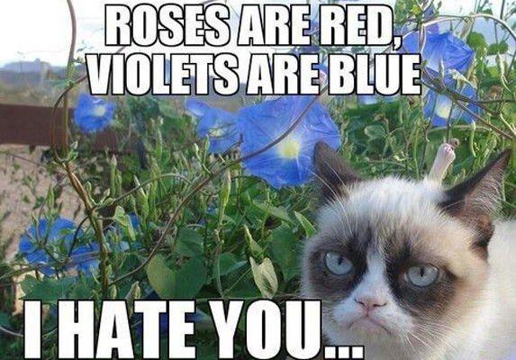 8 Hate Poem