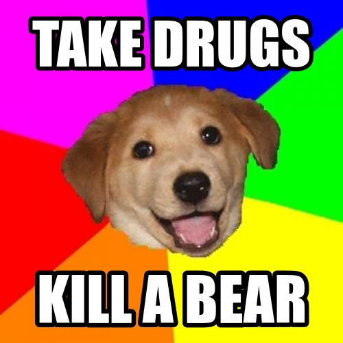 Grasp the Suprising Funny Drug Dog Pictures