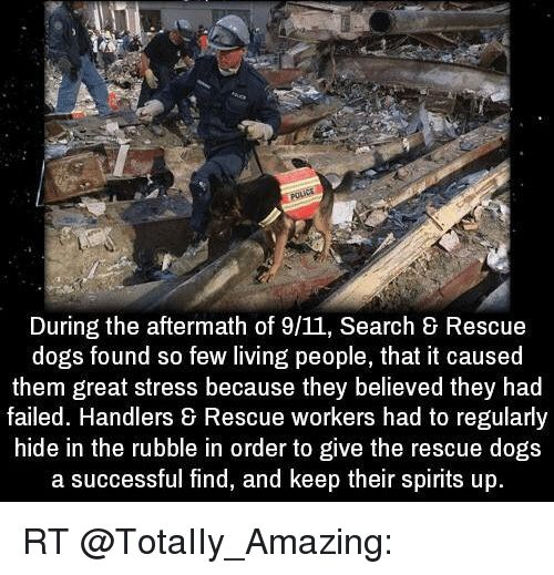 9 11 Memes and Spirit During the aftermath of 9 11