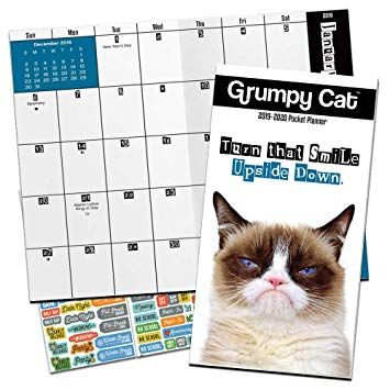 Grumpy Cat Monthly Pocket Planner 2019 2020 with DateWorks Calendar Stickers 2 Year Funny