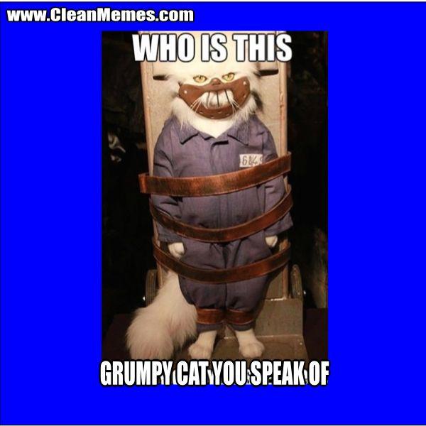 Grumpy Cat You Speak GrumpyCatYouSpeak