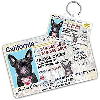 California Driver License Custom Dog Tag for Pets and Wallet Card Personalized Pet ID Tags Dog Tags For Dogs Dog ID Tag Personalized Dog ID Tags