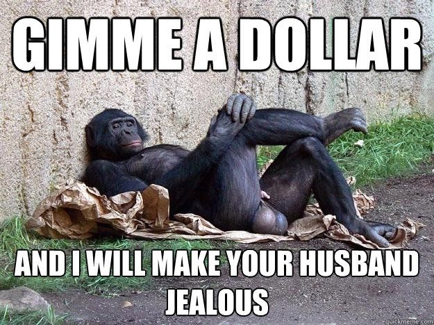 gimme a dollar and i will make your husband jealous Hater Monkey