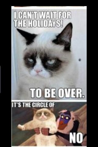 See the Fresh Funny Grumpy Cat Memes Christmas