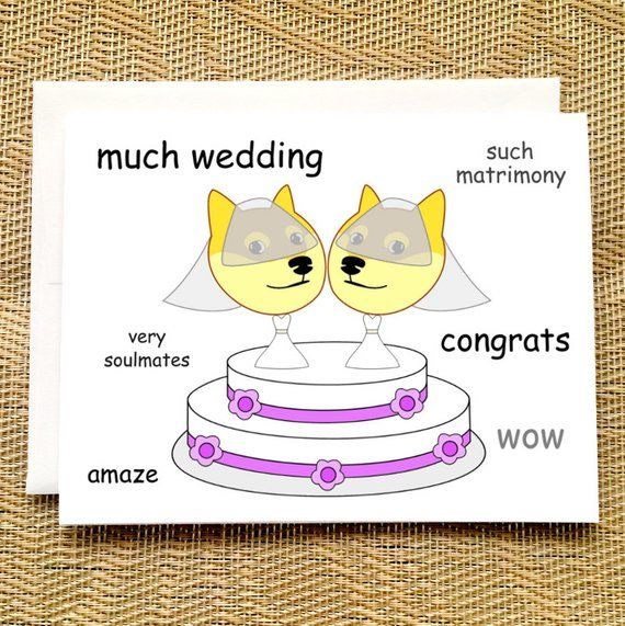 See the Incredible Funny Cat Wedding Memes