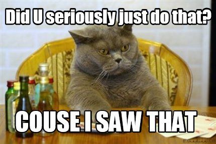 See the Incredible Serilosly Funny Cat Memes