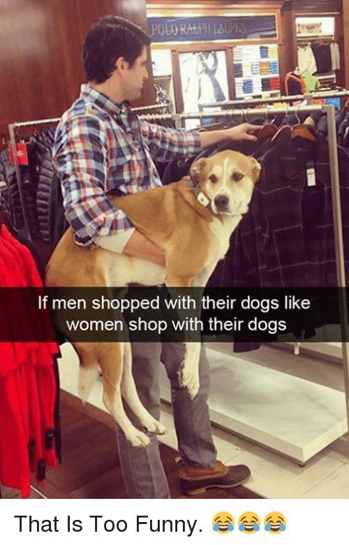 Dogs Funny and Memes If men shopped with their dogs like women shop