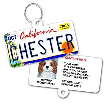 License Plate Custom Dog Tags for Pets Personalized Pet ID Tags Available For All 50 States Dog Tags For Dogs Dog ID Tag Personalized Dog ID Tags