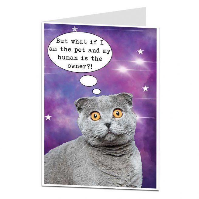 Funny Cat Birthday Card Funny Cat Birthday Card