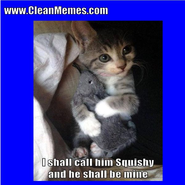 Author cleanmemesPosted on March 1 2017 Format ImageCategories Cat Memes Clean Funny Clean MemesTags Cat Memes Clean Funny