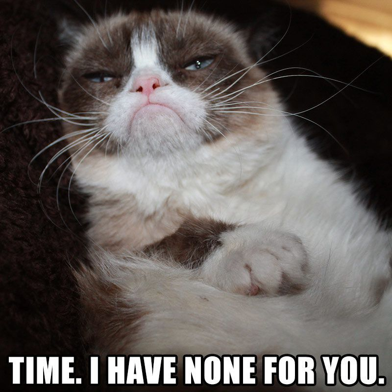 Nope Sorry Time I Have None For You RealGrumpyCat tumblr