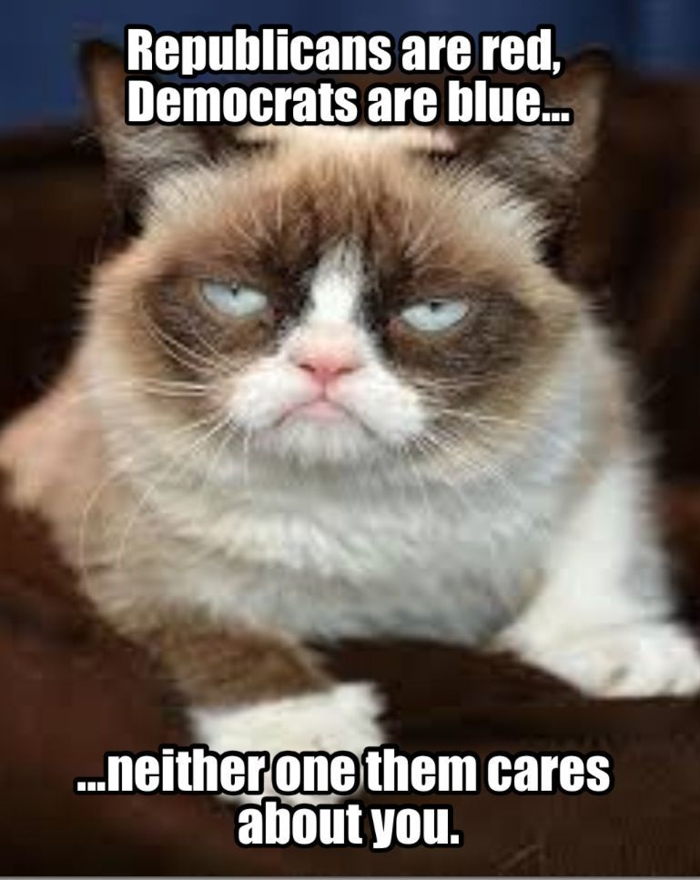 Democrats care more than Republicans for your information Grumpy Cat But I really don t trust any of them