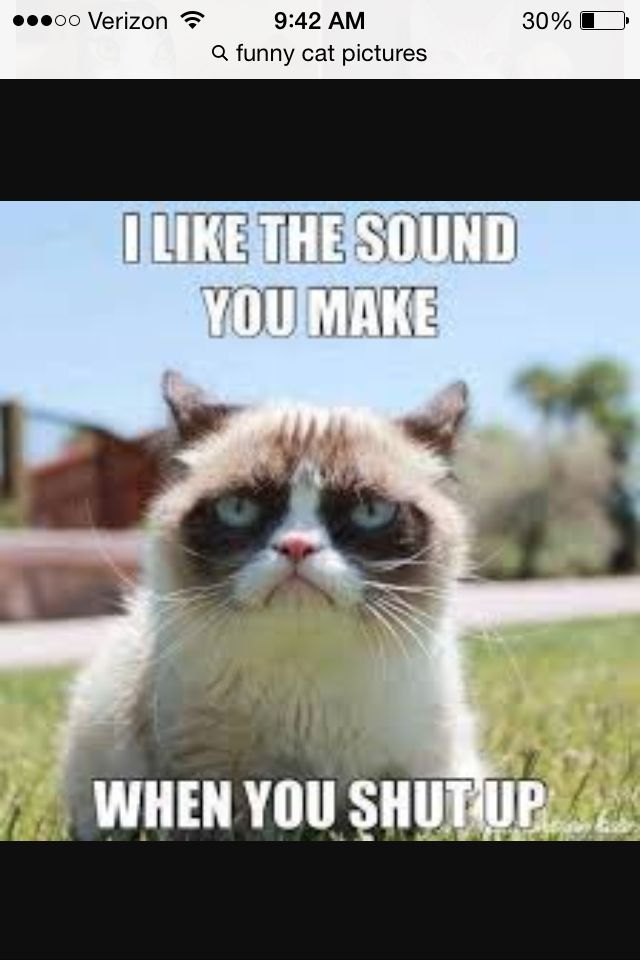 What a grumpy cat funny pictures with words pinterest grumpy 640x960 Grumpy cat school hilarious