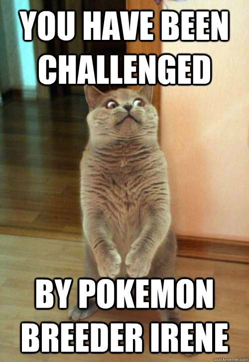 You have been challenged by pokemon breeder irene
