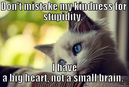 DON T MISTAKE MY KINDNESS FOR STUPIDITY I HAVE A BIG HEART NOT