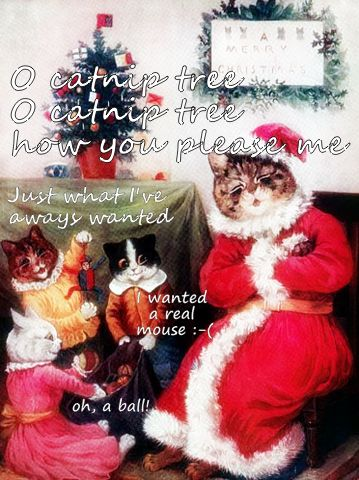 Christmas cats funny ts cats quote