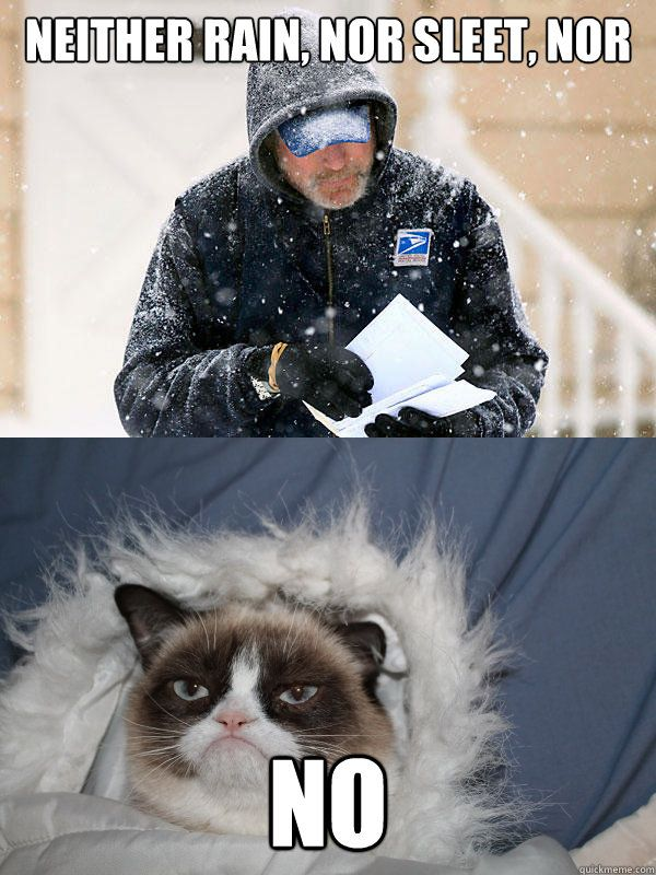 Grumpy cat doesn t want you to your mail