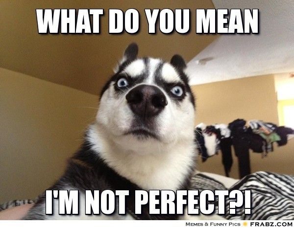 frabz WHAT DO YOU MEAN IM NOT PERFECT