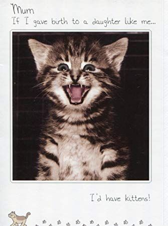 Happy Birthday Card Mum Funny Cat joke If I had a Daughter like me I d have kittens Amazon fice Products