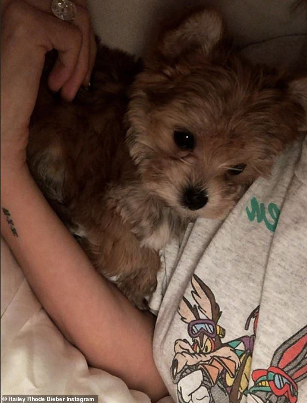 In love Hailey shared snaps of herself cuddling the cute dog who may be