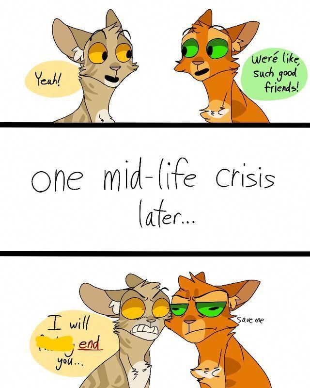 Firestar and estar funny not my art warriorcats