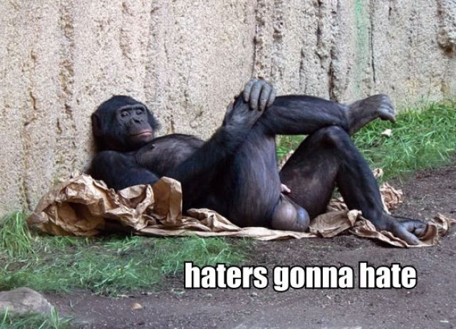 """36 Epic """"Haters Gonna Hate"""" Memes"""