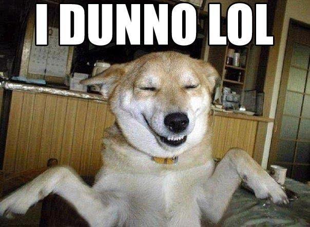 """""""I Dunno LOL"""""""