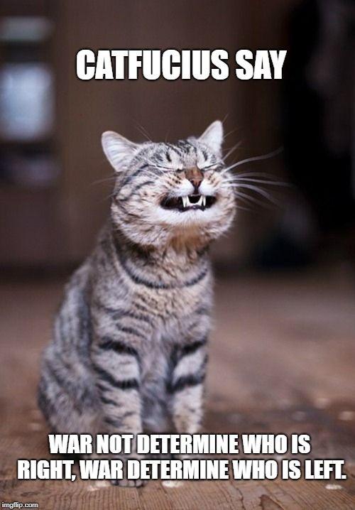 Catfucius say