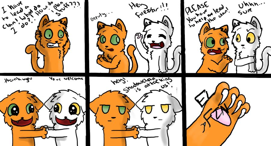 Warrior Cats Meme Firestar And Whitestorm By Skiefall Deviantart