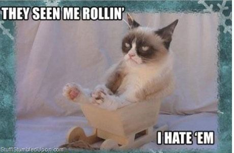 for content 2013 01 Grumpy Cat Meme Im Riding Dirty they see me rollin meme funny pictures blog
