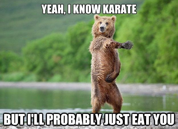 Yeah I Know Karate But I Will Probably Just Eat You Funny Karate Meme Image